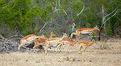 AFW 02 HP0002 01