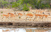 AFW 02 HP0004 01