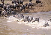 AFW 03 GL0002 01