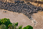 AFW 03 MH0005 01