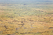 AFW 03 MH0023 01