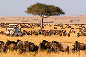 AFW 03 DB0001 01
