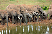 AFW 04 AC0018 01