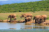 AFW 04 AC0020 01