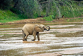 AFW 04 GL0011 01