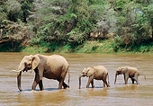 AFW 04 GL0015 01