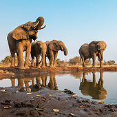 AFW 04 KH0007 01