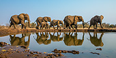 AFW 04 KH0013 01