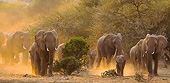 AFW 04 KH0014 01