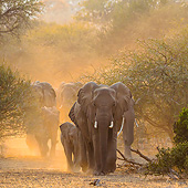 AFW 04 KH0015 01