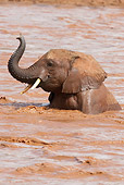AFW 04 MC0022 01