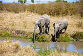 AFW 04 MC0030 01