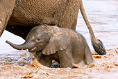 AFW 04 MC0045 01