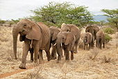 AFW 04 MC0057 01