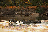 AFW 04 MH0052 01