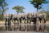 AFW 04 MH0080 01