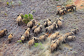 AFW 04 MH0092 01