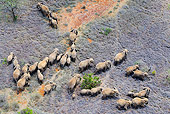 AFW 04 MH0093 01