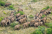 AFW 04 MH0097 01