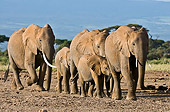 AFW 04 NE0010 01