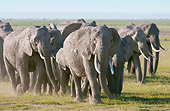 AFW 04 NE0014 01