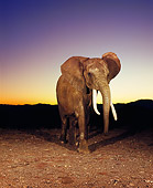 AFW 04 RK0104 02