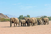 AFW 04 WF0002 01