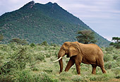 AFW 04 DB0003 01