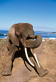 AFW 04 RK0031 01