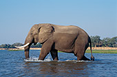 AFW 04 TL0045 01