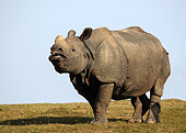 AFW 05 GL0002 01