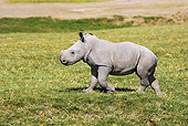 AFW 05 GL0012 01
