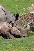 AFW 05 GL0016 01