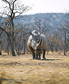AFW 05 JZ0002 01