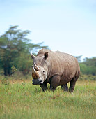 AFW 05 JZ0005 01