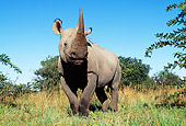 AFW 05 MH0030 01