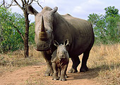 AFW 05 WF0002 01