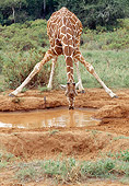 AFW 09 MC0007 01