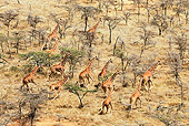 AFW 09 MH0049 01