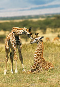 AFW 09 RW0003 01