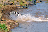 AFW 10 GL0007 01