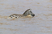 AFW 10 JE0002 01
