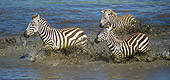 AFW 10 MC0016 01