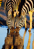 AFW 10 MH0027 01
