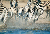 AFW 10 MH0028 01