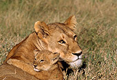 AFW 17 TL0002 01