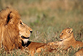 AFW 17 TL0005 01