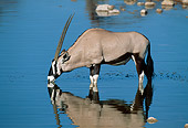 AFW 29 MH0002 01