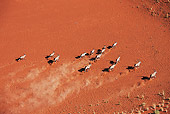AFW 29 MH0016 01