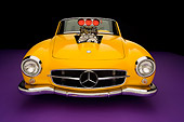 AUT 05 RK0489 01